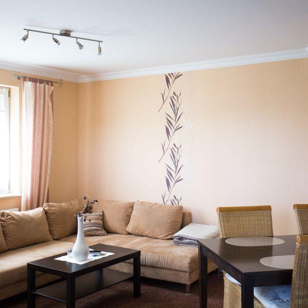 Ferienwohnungen Willingen-Wohnung1-Wohnzimmer