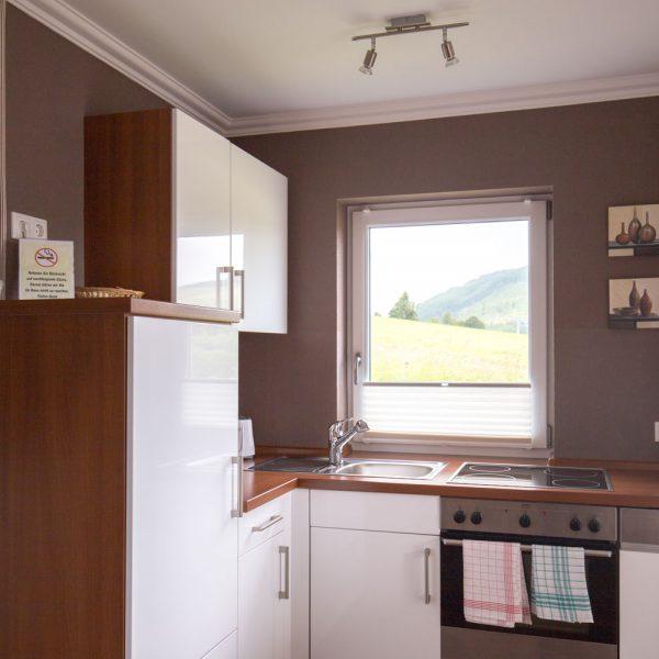 Ferienwohnungen Willingen-Wohnung2-Küche