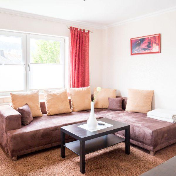 Ferienwohnungen Willingen-Wohnung3-Wohnzimmer1