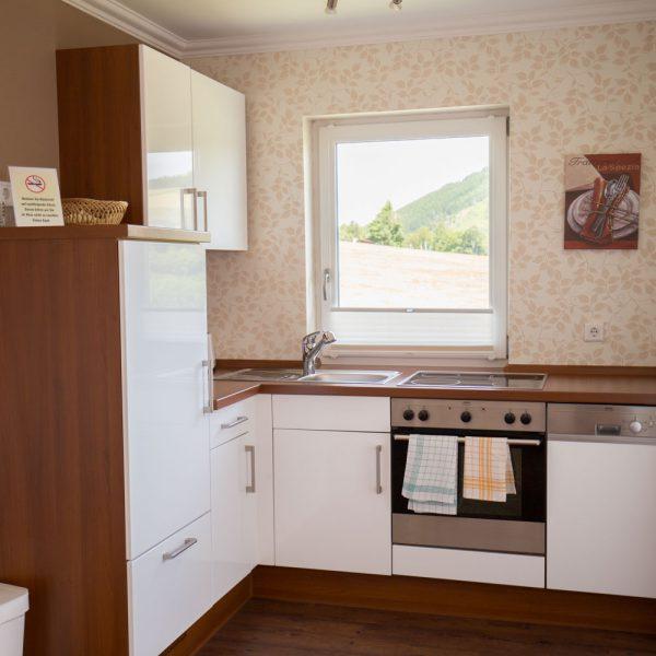 Ferienwohnungen Willingen-Wohnung4-Küche