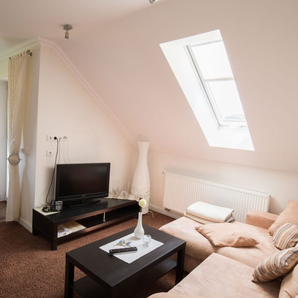 Ferienwohnungen Willingen-Wohnung4-Wohnzimmer