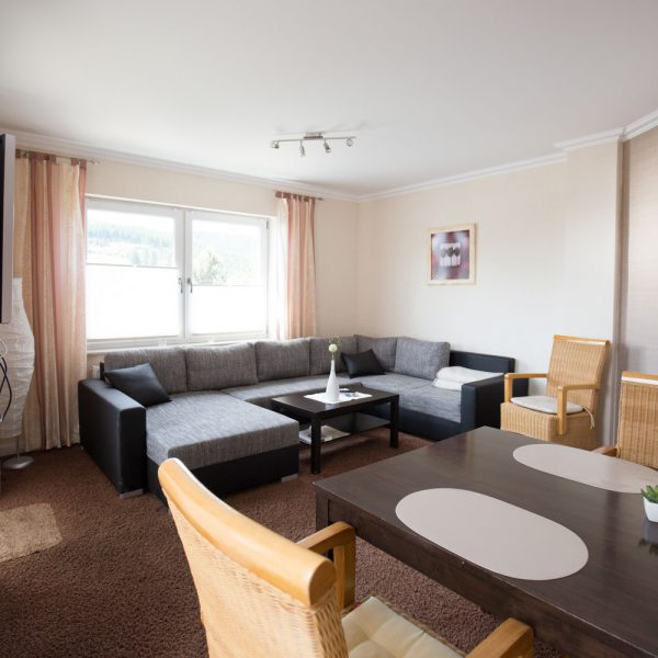 Ferienwohnungen Willingen-Wohnung5-Wohnzimmer